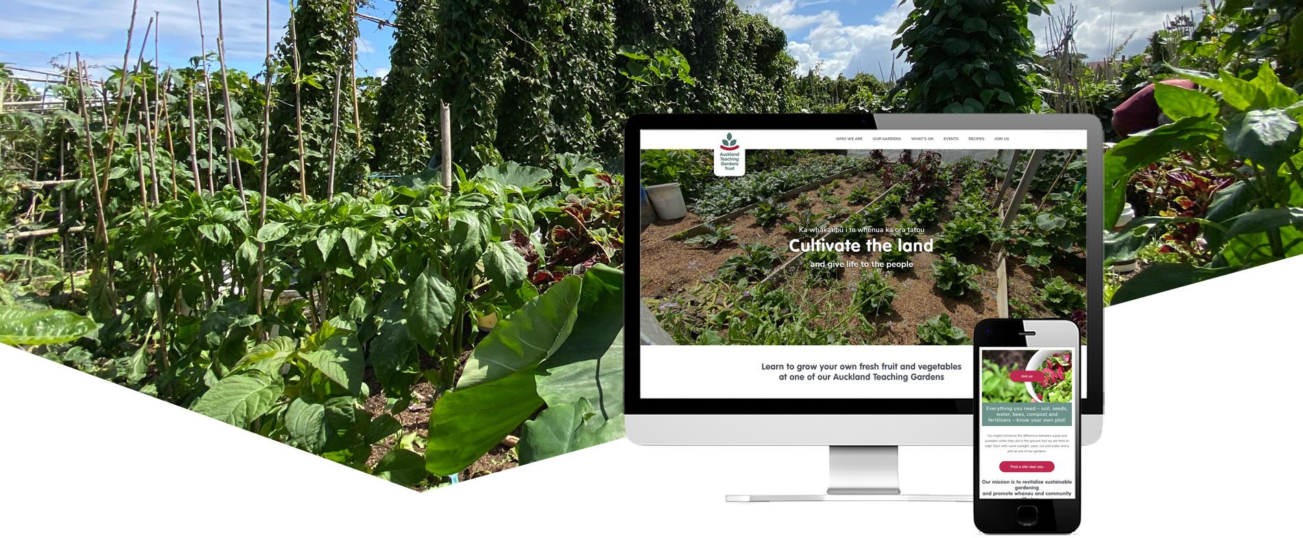 Auckland Teaching Gardens Project Banner - Auckland Teaching Gardens Website Design